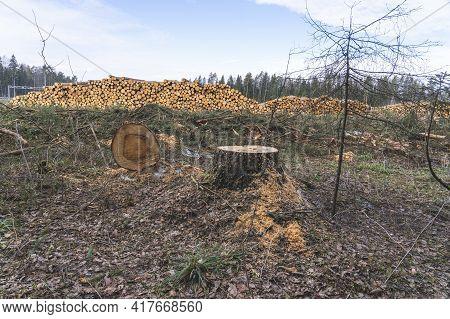 Deforestation For Roads, Wood Harvesting, Wood As A Renewable Biological Resource, Deforestation Are