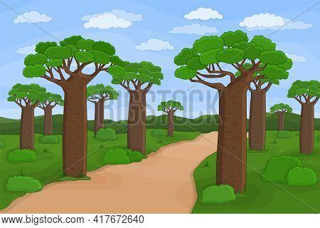 Vector Outline African Madagascar Baobab Street. Doodle Cartoon Hand Drawn Landscape Illustration Of