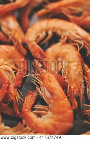 Close up on boiled big sea prawns or shrimps placed on black ceramic plate