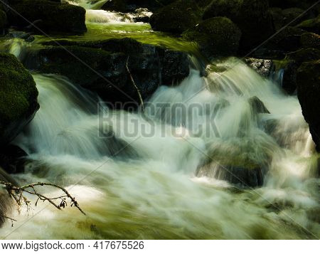 A Green River With Seaweeds And Mossy Stones Flowing Through The Forest