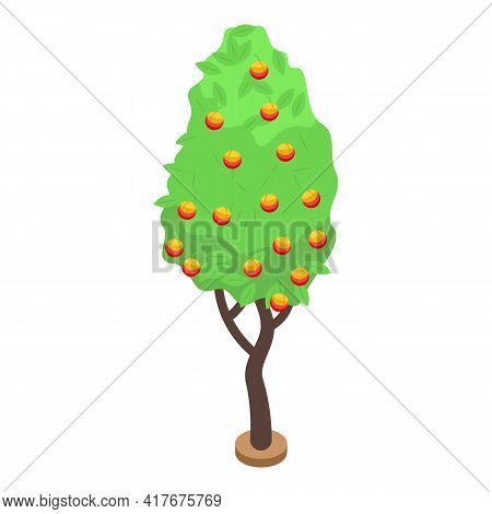 Peach Fruit Tree Icon. Isometric Of Peach Fruit Tree Vector Icon For Web Design Isolated On White Ba