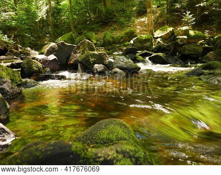 A Green River With Seaweeds And Mossy Stones Flowing In A Forest