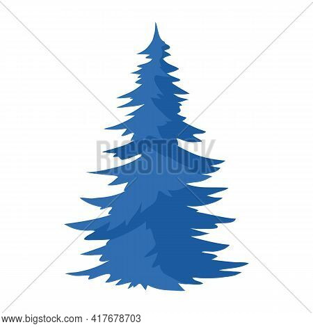 Illustration Of Spruce. Natural Icon Of Blue Tree.