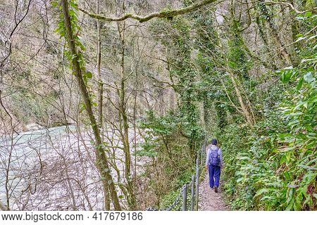 In Winter Senior Man With Backpack And In Baseball Cap Is Walking Along Hiking Trail Near The River