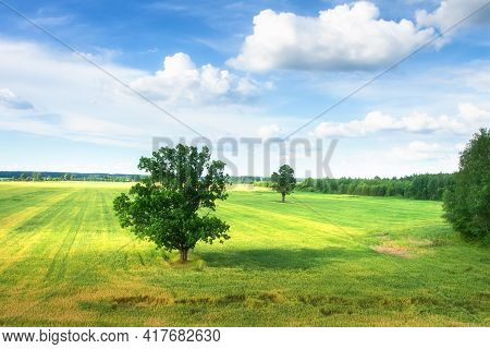 Summer Landscape. Beautiful Aerial View Of Green Meadow. Cloudy Sky Above Field. Trees In Field.