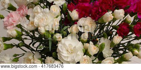 Flower bouquet horizontal long background. Red and white Carnations.