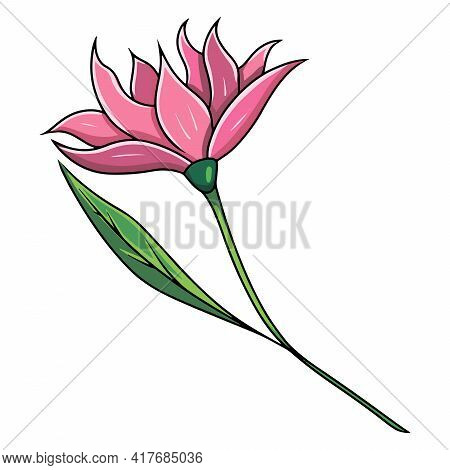 Flower. A Beautiful Flower With A Stem And Leaves. Cartoon Style.