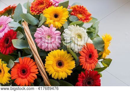 Mothers Day Concept. Colorful Flowers. Beautiful Bouquet Of Colorful Spring Flowers Daisy, Gerber.fl