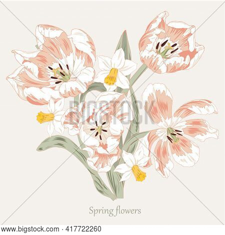 Composition Of Spring Flowers, Pink Tulips And Daffodils, Vector Illustration