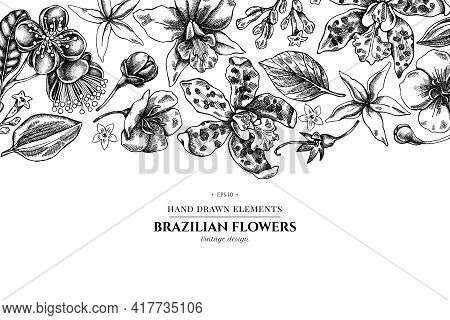 Floral Design With Black And White Laelia, Feijoa Flowers, Glory Bush, Papilio Torquatus, Cinchona,