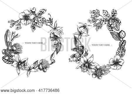 Floral Wreath Of Black And White Laelia, Feijoa Flowers, Glory Bush, Papilio Torquatus, Cinchona, Ca