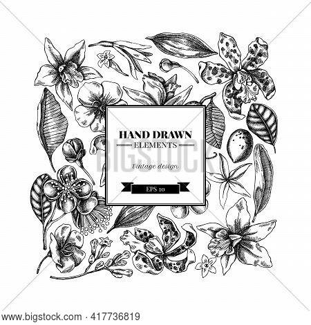 Square Floral Design With Black And White Laelia, Feijoa Flowers, Glory Bush, Papilio Torquatus, Cin