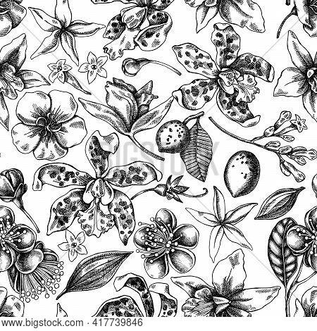 Seamless Pattern With Black And White Laelia, Feijoa Flowers, Glory Bush, Papilio Torquatus, Cinchon