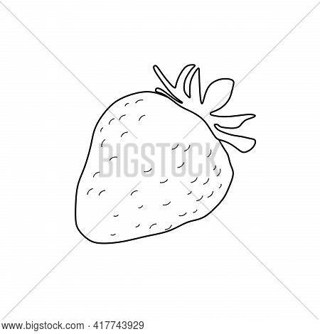 Vector Graphic Of Strawberry Icon. Suitable For Coloring Book. Strawberry Sketch