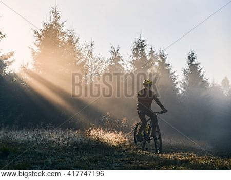 Man Cyclist In Cycling Suit Riding Bicycle Near Forest Illuminated By Morning Sunlight. Bicyclist Cy