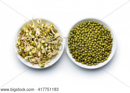 Sprouted green mung beans and dried beans. Mung sprouts isolated on white background.