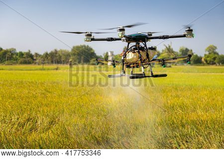 Modern Smart Farm With Drone. Agriculture Drone Fly To Sprayed Fertilizer On The Rice Fields.