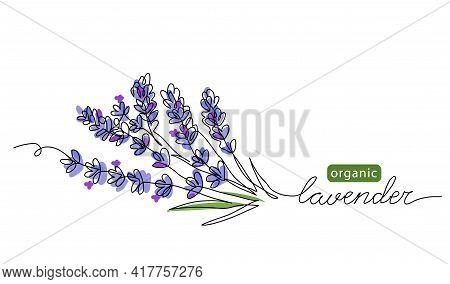 Lavender Plant Bunch, Branch Vector Illustration. One Continuous Line Drawing Illustration With Lett