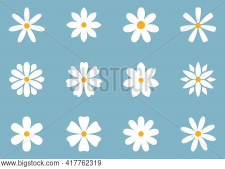 Vector Set With Cute Daisy Or Camomile Flowers Illustration On Blue Background. Different Shapes Rou