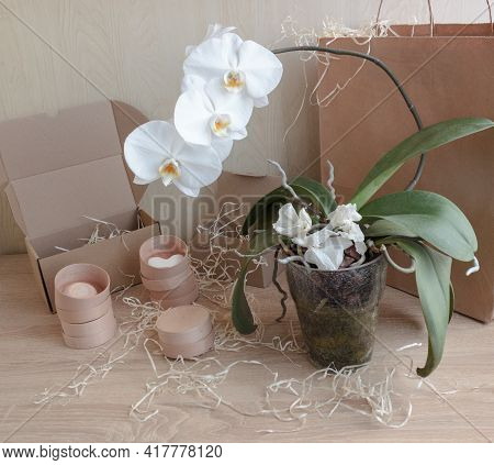 Cardboard Boxes Of Different Sizes With Natural Filling, A Large Paper Bag, 4 Small Round Boxes On A