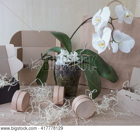 Cardboard Boxes Of Different Sizes With Natural Filling, Small Round Boxes On A Wooden Background. W