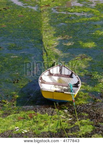 small yellow and white fishing boat