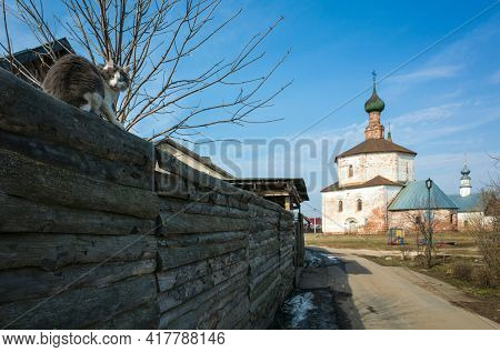 Morning in Russian town Suzdal in spring, Fluffy cat sitting on high raw wooden fence, Old Orthodox church on a distance, Part of Golden Ring ancient towns of Russia, Holy Cross church