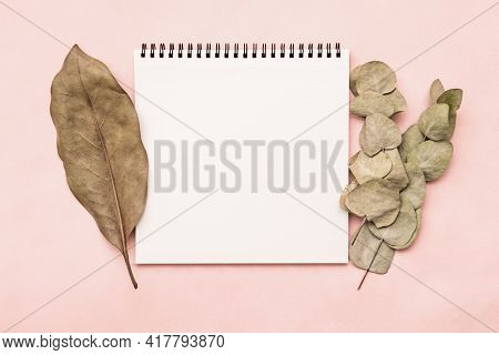 Sketchbook Notepad Mocap On Pink Background With Eucalyptus Branch And Ficus Leaf. Empty White Sheet