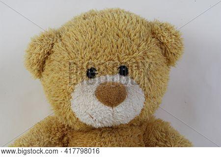 Close Up Head Of An Very Ols Teddy Bear