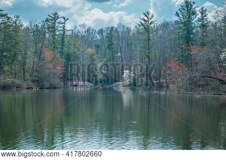 Emerging Foliage And Flowering Trees On A Bright Sunny Day On Byrd Lake In Crossville, Tennessee In