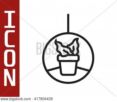 Black Line Plant In Hanging Pot Icon Isolated On White Background. Decorative Macrame Handmade Hange