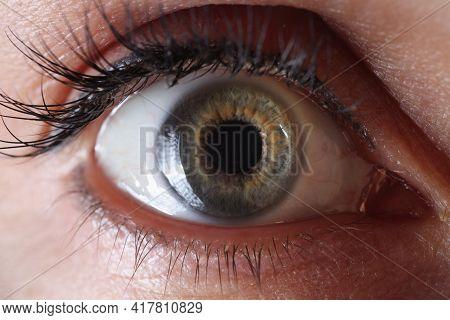 Female Eye With Permanent Eyelid Makeup Closeup