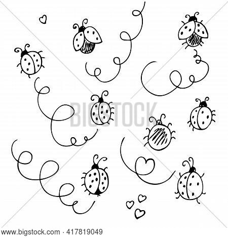 Ladybirds Vector Set, Hand Drawn Collection Of Funny Cute Ladybugs And Lines, Isolated On White Back