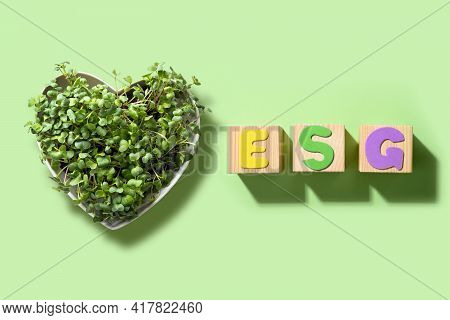 Esg - Environmental. Social. Governance. Company Audit For Environmental Friendliness Of Business.
