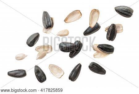 Sunflower Seed Peeled And Not Peeled Fly Close-up On A White Background. Isolated