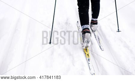 Cropped View Of Legs And Skis While Sporting. Back View On Ski Runner On Track. Hobby Cross Country