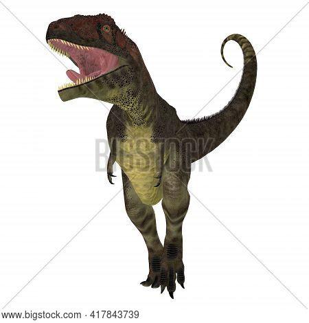 Mapusaurus Dinosaur Aggression 3d Illustration - Mapusaurus Was A Carnivorous Theropod Dinosaur That