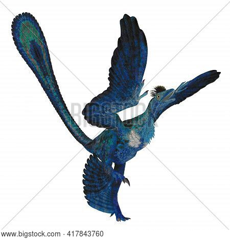 Microraptor Reptile Tail 3d Illustration - Microraptor Was A Carnivorous Four-winged Reptile Bird Th