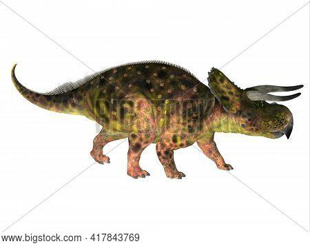 Nasutoceratops Dinosaur Side Profile 3d Illustration - Nasutoceratops Was A Herbivorous Ceratopsid D