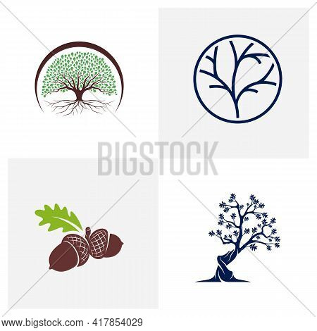 Set Of Oak Tree Logo Design Vector Illustration, Creative Oak Tree Logo Design Concept Template, Sym