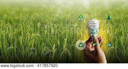 Team Business Energy Use, Sustainability Elements Energy Sources Sustainable Ecology Bio Alternative