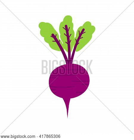 Beet, Beetroot Vegetable With Green Leaves Cute Cartoon Style Vector Illustration, Icon.
