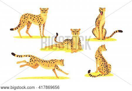 Cartoon Leopard Set. Wild Jaguar, Cheetah Cat Standing, Lying, Sitting, Running, Jumping Isolated On