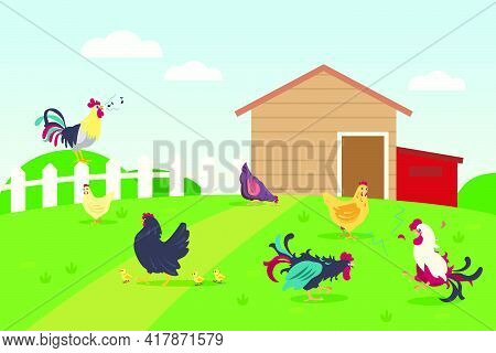 Live Of Hens And Roosters In Countryside. Chicken, Grass, Lawn Flat Vector Illustration. Farm Animal