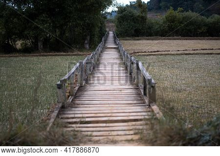 Wooden Walkway By Some Rice Fields Close To A Rural Village On Hike Kalaw To Inle Lakw, Shan State,