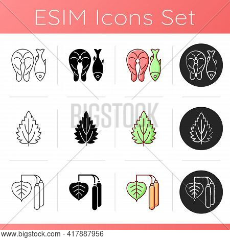 Common Allergens Icons Set. Fish And Marine Food. Nettle Leaf. Birch Pollen. Reason For Allergy. Her