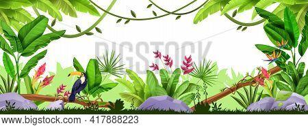 Jungle Vector Frame, Rainforest Exotic Border, Wildlife Tropical Nature Banner, Banana Leaves, Touca