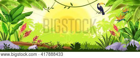 Jungle Background, Rainforest Sunrise, Nature Wood Landscape, Toucan, Banana Leaf, Tropical Flowers,