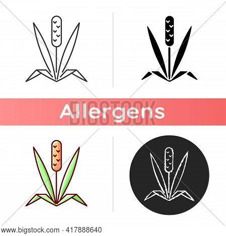 Timothy Grass Icon. Herbal Allergen. Cause Of Allergic Reaction. Wild Field Foliage. Garden Sprout.