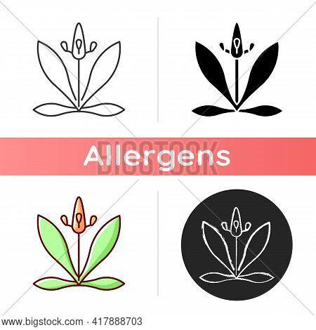 English Plantain Icon. Plantago Lanceolata. Flower Pollen As Allergen. Ribwort Plantain. Seasonal Al